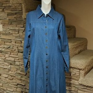 ↔️Appleseed jean dress size 14